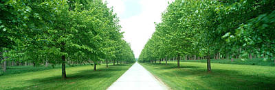 Avenue At Chateau De Modave Ardennes Poster by Panoramic Images
