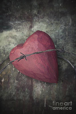 Barbed Wire And Heart Poster by Maria Heyens