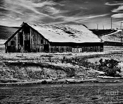 Barn By The River Bw Poster by Cheryl Young