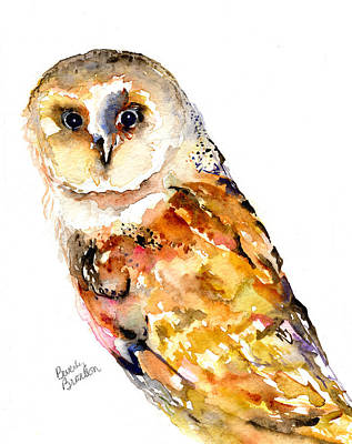 Barn Owl Poster by Beverly Bronson