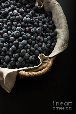 Basket Full Fresh Picked Blueberries Poster by Edward Fielding