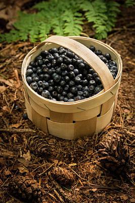 Basket Full Of Bilberries Poster by Aberration Films Ltd