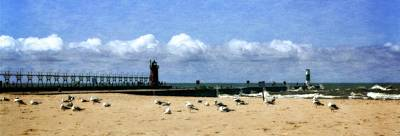 Beach At South Haven  Poster by Michelle Calkins