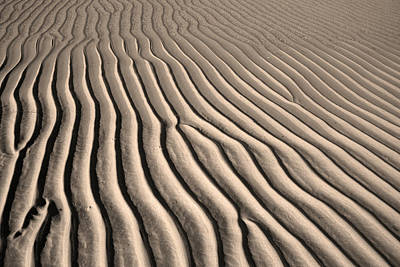 Beach Sand Ripples Poster by Brooke Ryan