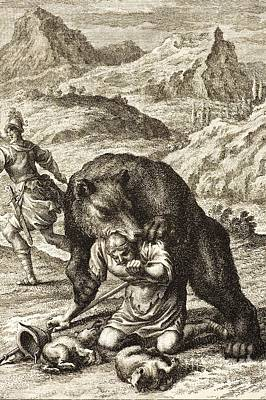 Bear Attack, Scheuchzer, 1731 Poster by Paul D. Stewart