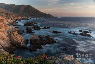 Beautiful California Coast In Spring Poster by Mike Reid