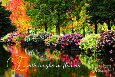 Beautiful Park With Autumn Trees And Colorful Flowers Poster by Beverly Claire Kaiya