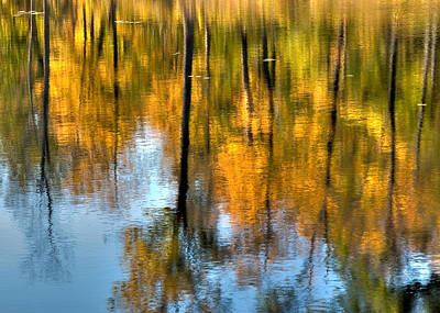 Beaver Pond Reflections 2 Poster by Rob Huntley