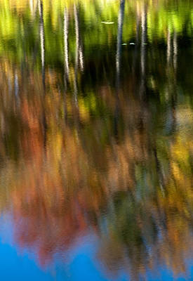 Beaver Pond Reflections 5 Poster by Rob Huntley