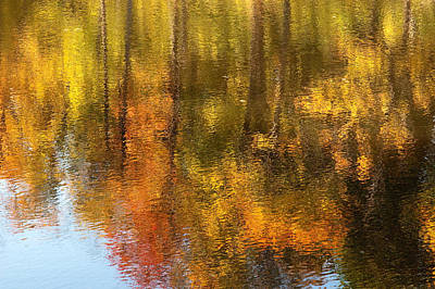 Beaver Pond Reflections Poster by Rob Huntley