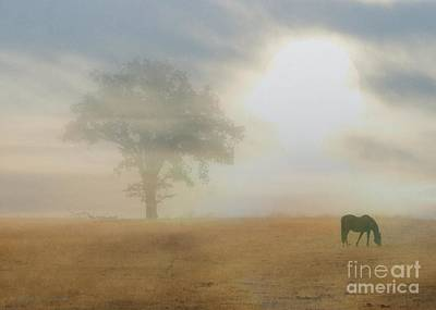 Serene Horse And Oak Tree Poster by Stephanie Laird