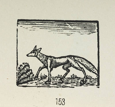 Bewick's Woodcuts Poster by British Library