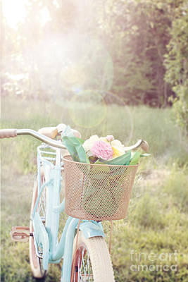 Bicycle And Flowers Poster by Stephanie Frey