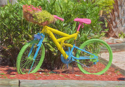Bicycle Of Colors Poster by Kim Hojnacki