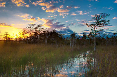 Big Cypress Sunrise Poster by Rich Leighton