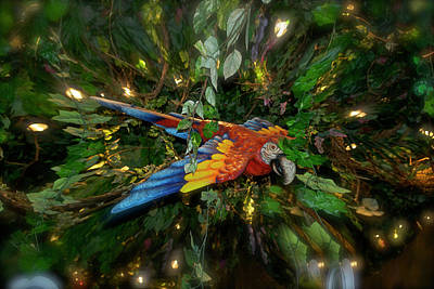 Big Glider Macaw Digital Art Poster by Thomas Woolworth