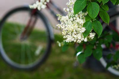 Biking Season In Bloom - Featured 2 Poster by Alexander Senin