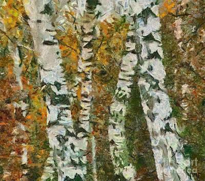 Birches Poster by Dragica  Micki Fortuna