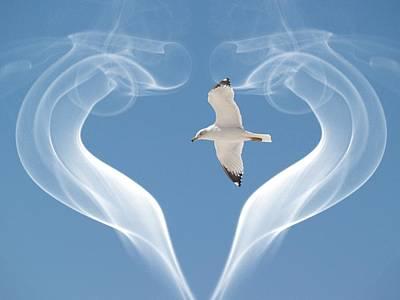 Bird In Flight Poster by Athala Carole Bruckner