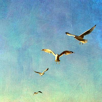 Birds Above Poster by Michelle Calkins