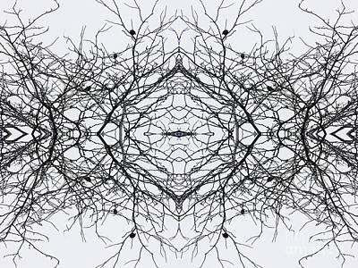 Birds In The Branches 4 Poster by Sarah Loft