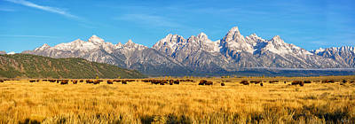 Bison Beneath The Tetons Limited Edition Panorama Poster by Greg Norrell