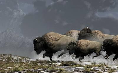 Bison Stampede Poster by Daniel Eskridge