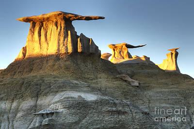 Bisti/de-na-zin Wilderness Golden Wings 2 Poster by Bob Christopher