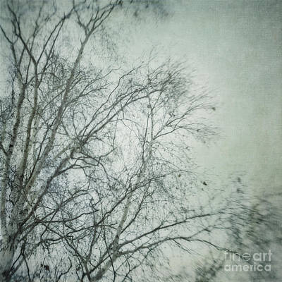 bleakly I Poster by Priska Wettstein