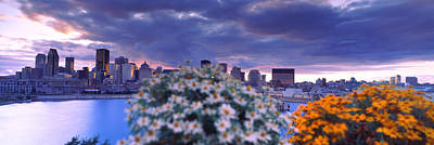 Blooming Flowers With City Skyline Poster by Panoramic Images
