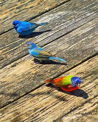 Blue And Indigo Buntings - Three Little Buntings Poster by Rebecca Korpita