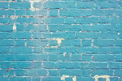 Blue Brick Wall Poster by Tom Gowanlock