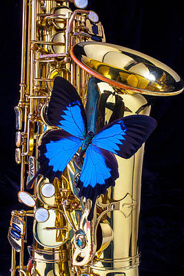 Blue Butterfly On Sax Poster by Garry Gay