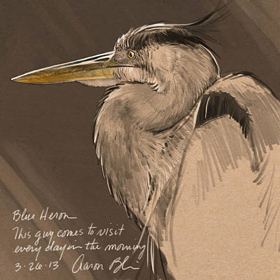 Blue Heron Sketch Poster by Aaron Blaise