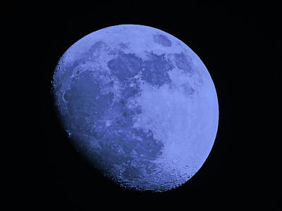 Blue Moon Poster by Tom Gari Gallery-Three-Photography