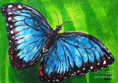 Blue Morpho Butterfly Poster by Zaira Dzhaubaeva