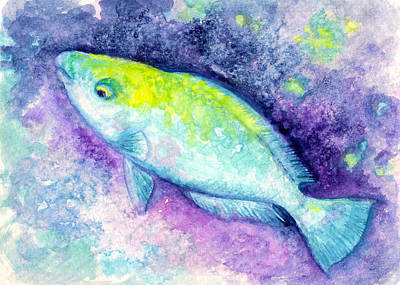 Blue Parrotfish Poster by Ashley Kujan