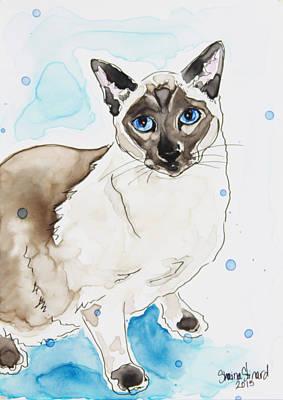 Blue Point Siamese Poster by Shaina Stinard
