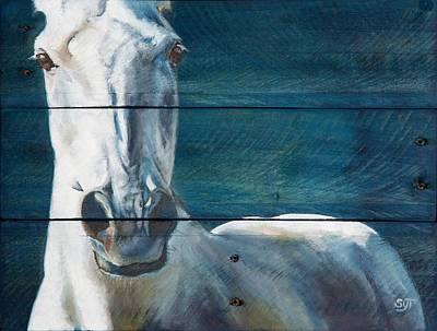 Blue Sterling Poster by Shaila Yovan Tenorio