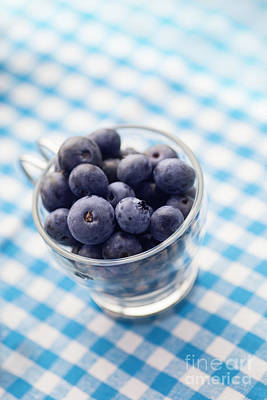 Blueberries Poster by Mythja  Photography