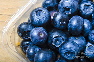 Blueberries Punnet Poster by Jorgo Photography - Wall Art Gallery