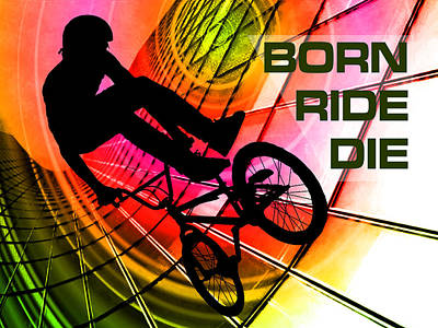 Bmx In Lines And Circles Born Ride Die Poster by Elaine Plesser