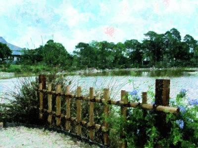 Boca Morikami Gardens Poster by Florene Welebny