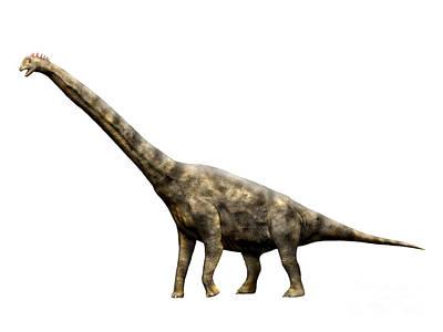 Brachiosaurus Dinosaur Poster by Nobumichi Tamura