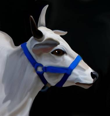 Brahma Bull Poster by Karen Sheltrown