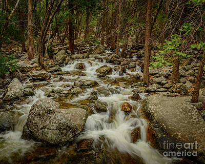 Bridalveil Creek In Yosemite Poster by Terry Garvin