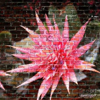Bromeliad On The Wall Poster by Leanne Seymour