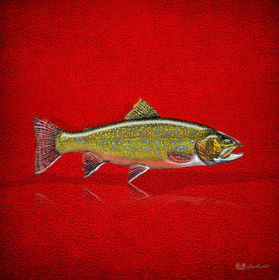 Brook Trout On Red Leather Poster by Serge Averbukh