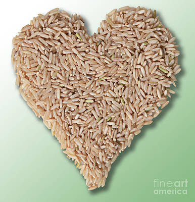 Brown Rice, Heart Healthy Poster by Gwen Shockey
