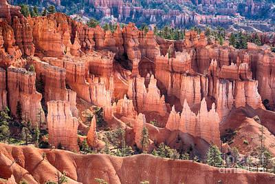 Bryce Canyon Utah Views 508 Poster by James BO  Insogna